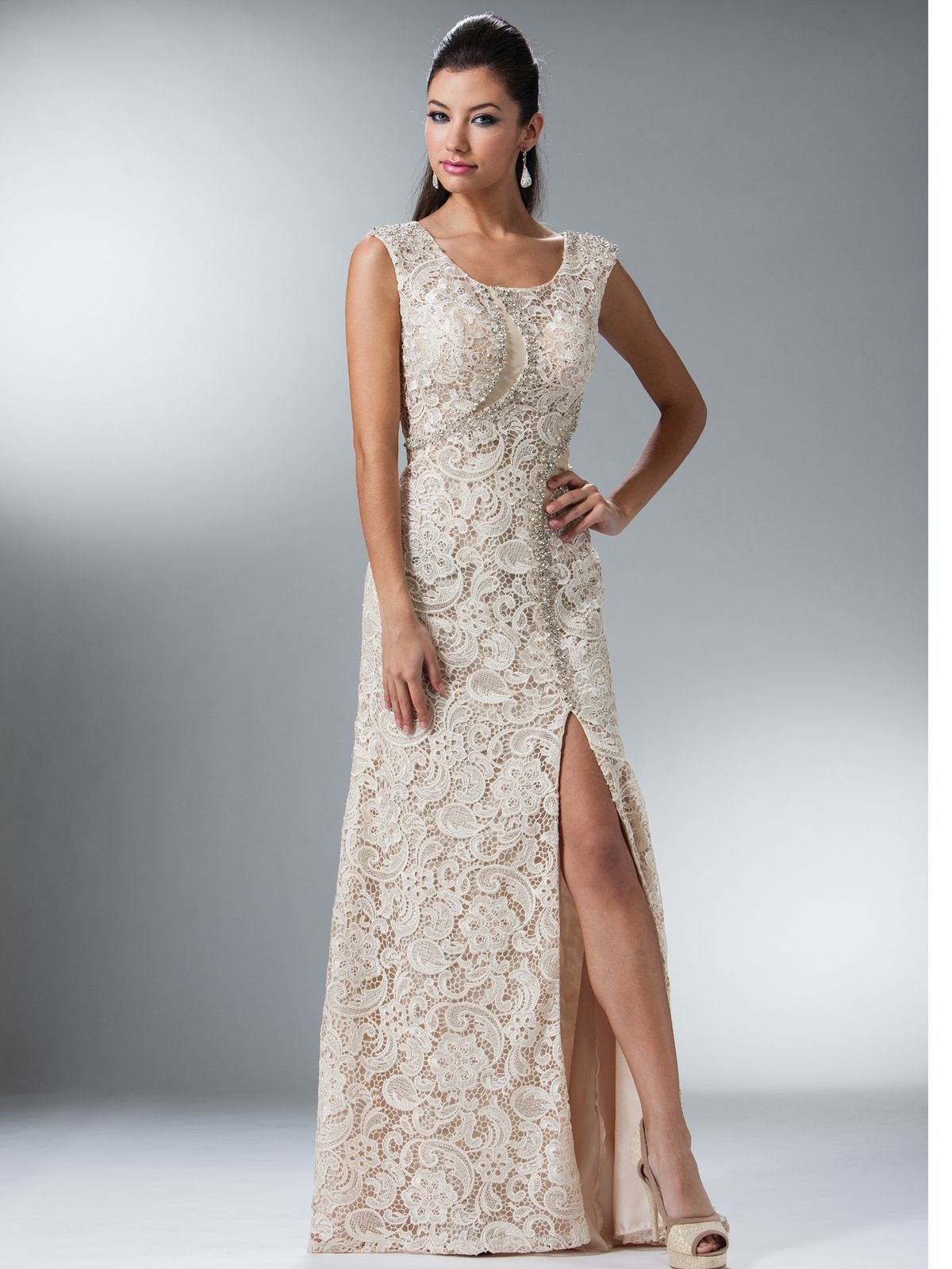 739fec15712 Champagne Vintage Lace Fitted Evening Dress