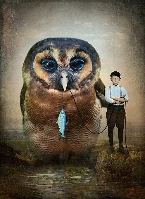 'Buddies' , made by: Catrin Welz-Stein - (big owl)
