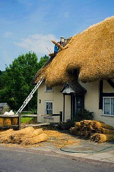 A man replacing a traditional thatched roof on a cottage. Midhurst, West Sussex, England, UK