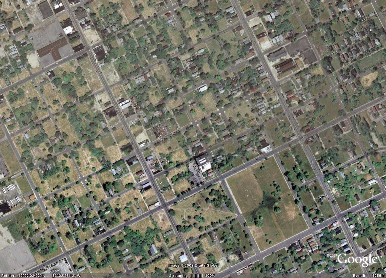 Detroit: The Lost City. Depopulation of Detroit neighborhoods as seen from above. All those open green patches were once peoples' yards!! The houses were abandoned and razed to the ground.