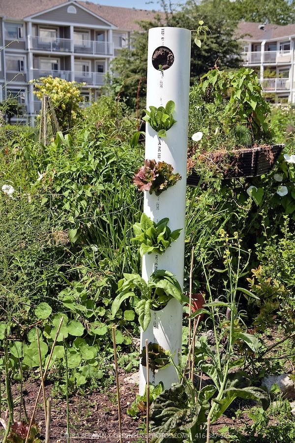 el jardin vertical jardin vertical tubos pvc al huerto