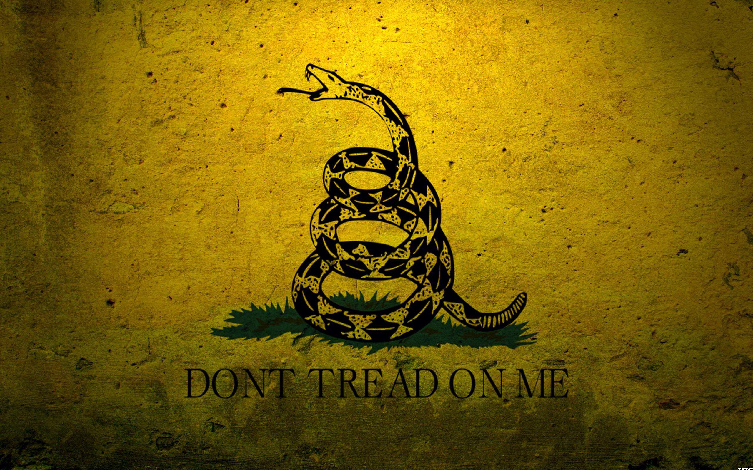 Gadsden Flag 01 X Gadsden Flag American Flag Wallpaper Dont Tread On Me