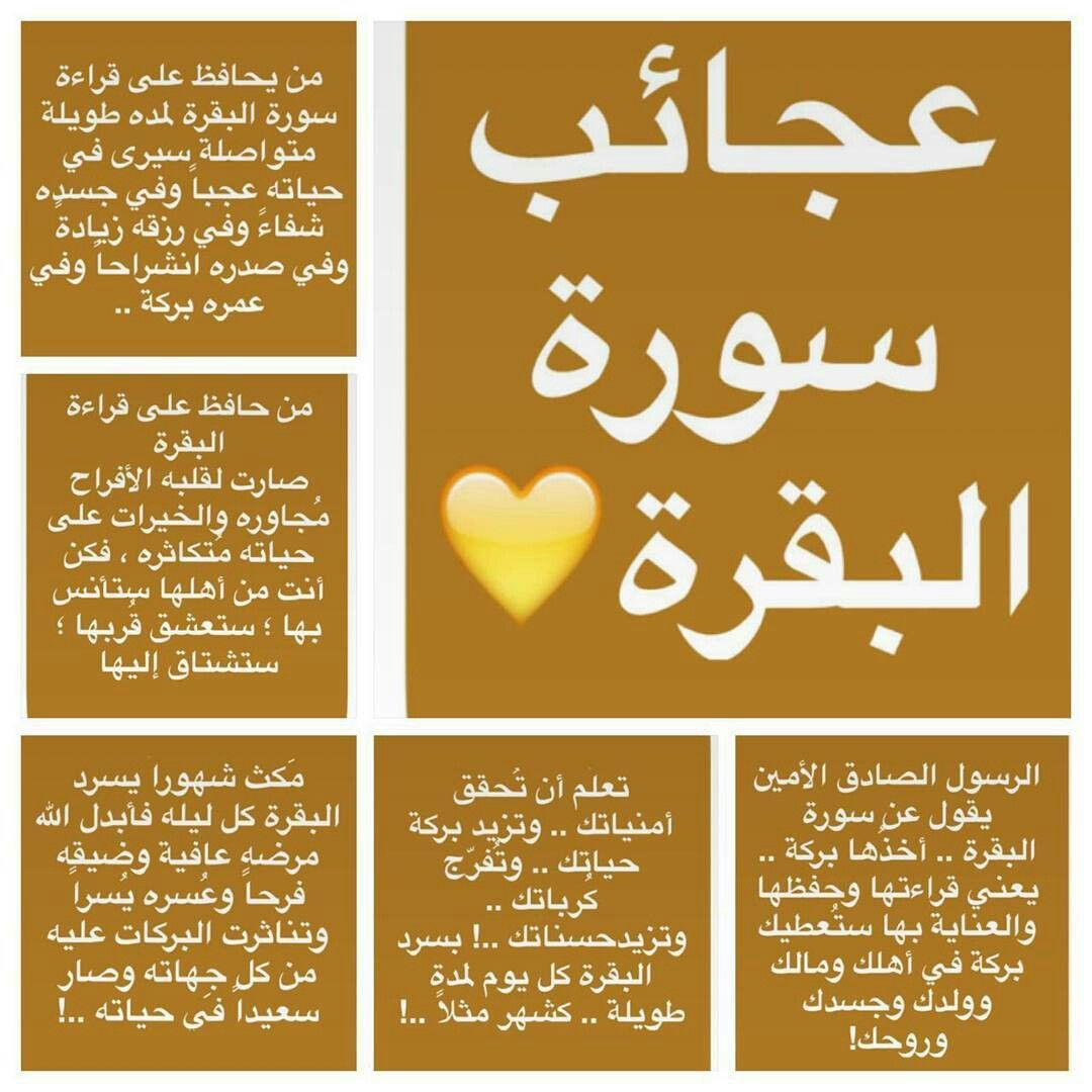 Pin By Rana Sherief On زهره Islam Facts Islam Beliefs Islamic Phrases