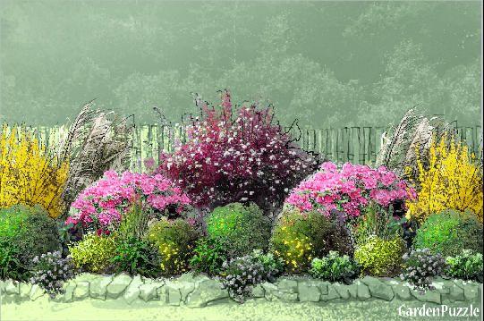 Rhododendron Forsythia Border Garden Design Fence Border