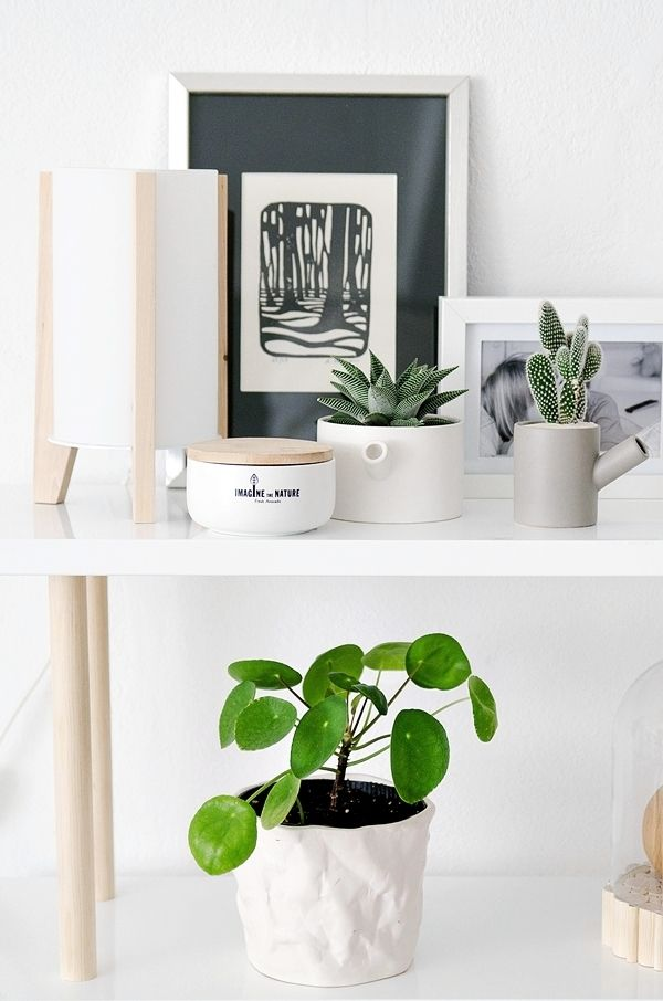 Möbel selber bauen Woods, Interiors and Shelves - designer mobel bucherregal