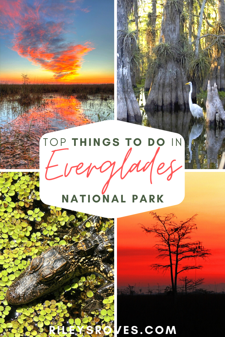 The Top Best 10 Things To Do In Everglades National Park Everglades National Park National Parks World Travel Guide