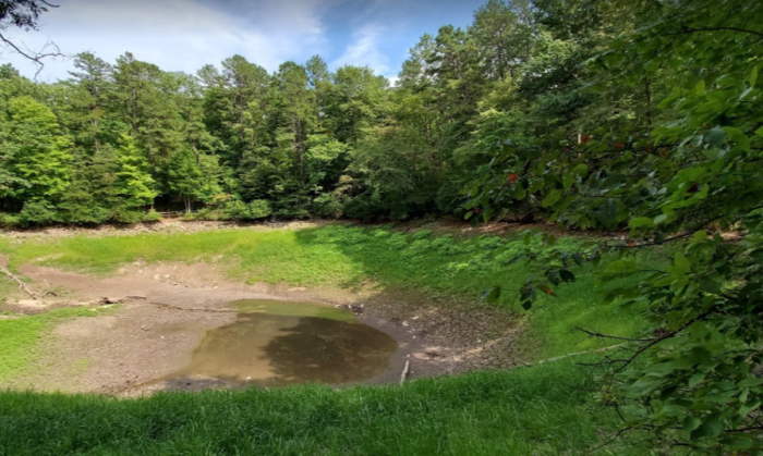 The Last Natural Lake In West Virginia, Trout Pond Is Slowly Sinking Out Of Sight