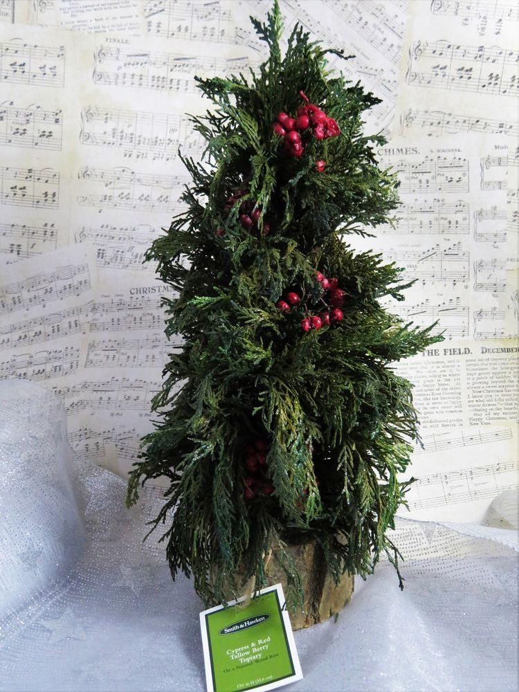 Cypress  Red Tallow Berry Topiary Miniature Christmas Tree W