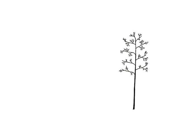 minimalist art print tree line drawing the winters