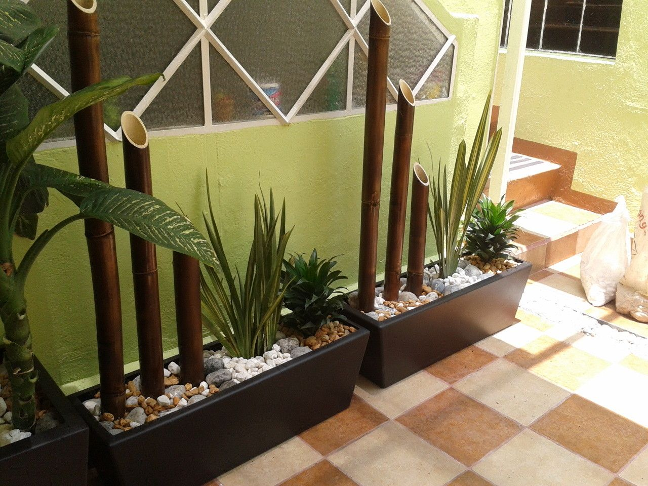 Plantas naturales y artificiales natdeco coyoacan for Decoracion con plantas en living