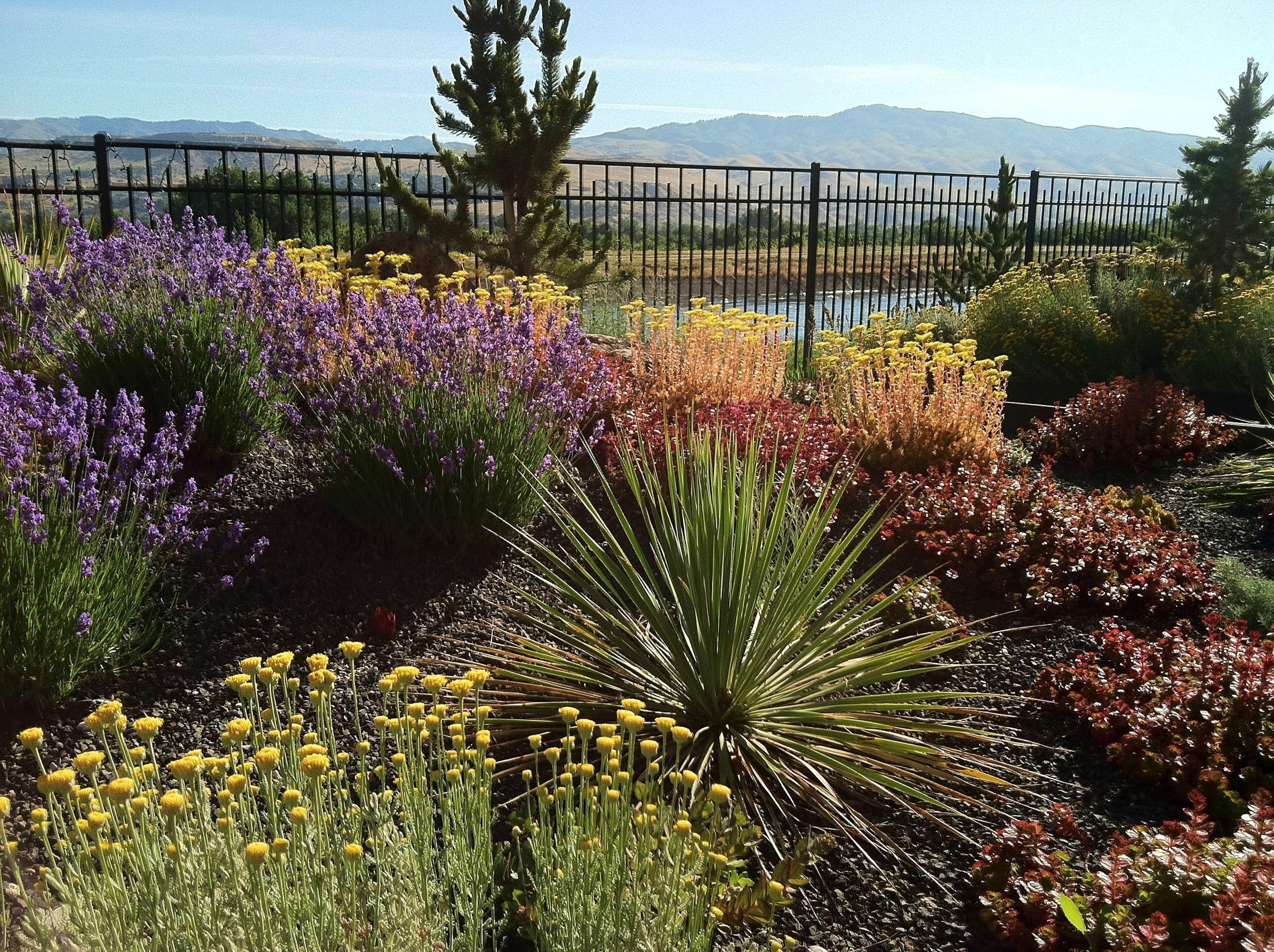 Boise Landscape Design And Build Landscape Design Backyard Landscaping Contemporary Garden
