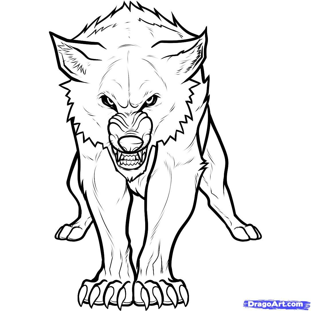 wolf drawing front - Google Search | Art | Pinterest | Lobos ...