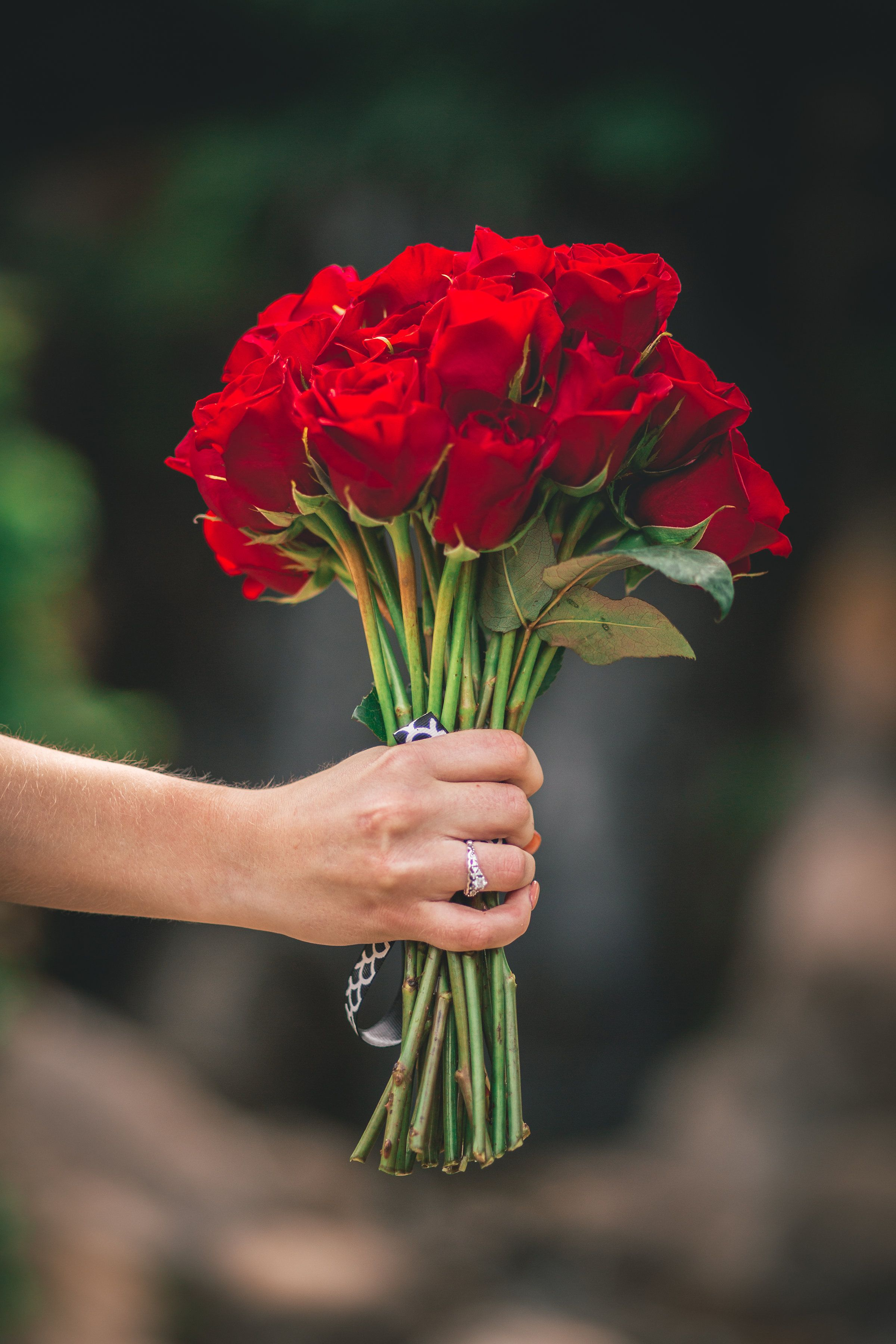 A fresh Valentine's Day rose bouquet is the perfect gift