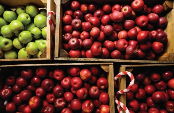 #Apple Cider, Apple Pie, Apple Picking... the list goes on for #Fall festivities! These apples are from Carter Mountain #Orchard in Charlottesville, #Virginia Near Monticello