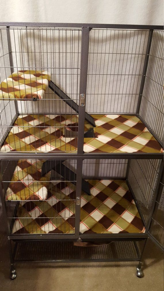 Feisty Ferret Cage