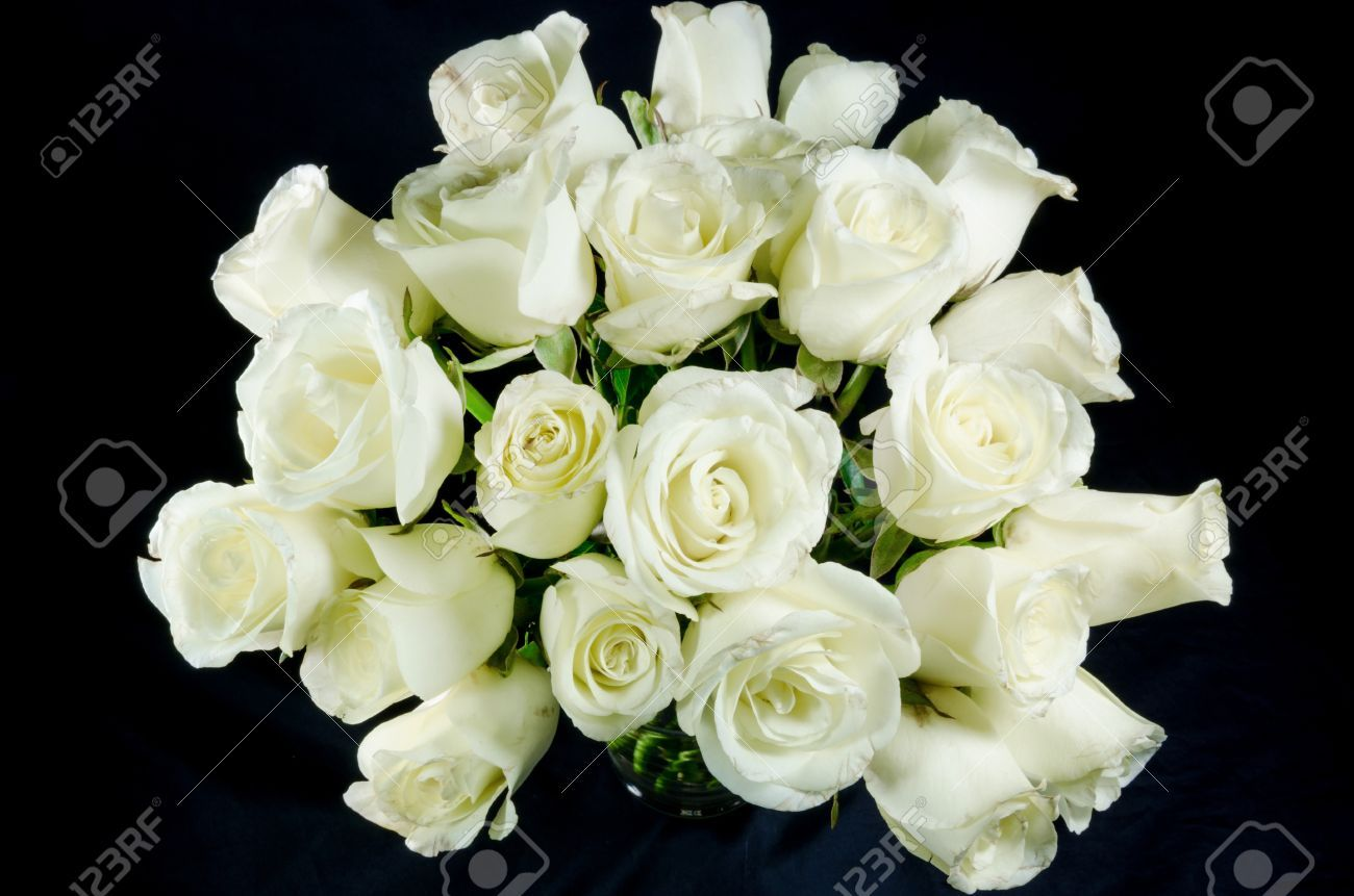 White Roses Black Background Wonder Keywords And Pictures S