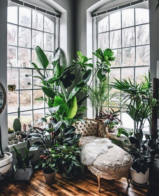 Photo of Visit: An apartment with an Urban Jungle decoration | Shake My Blog
