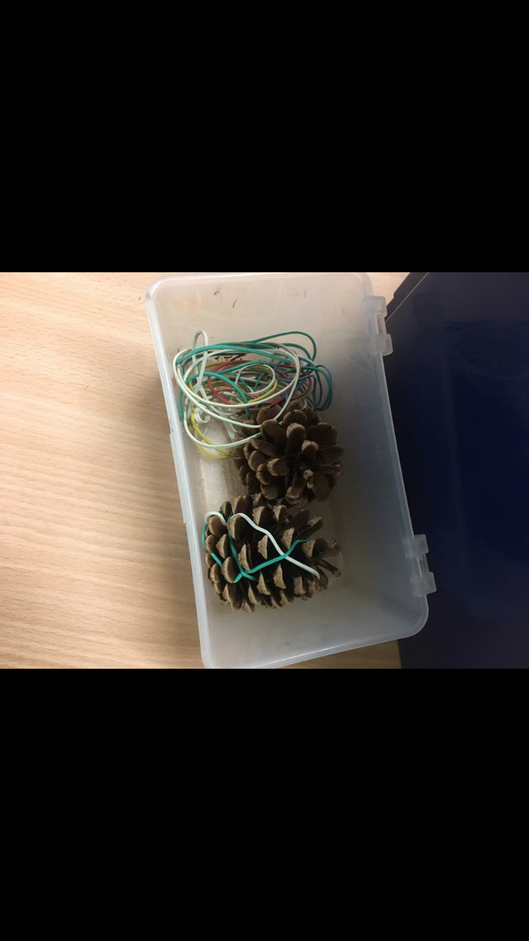 Weaving with elastic bands onto pine cones.