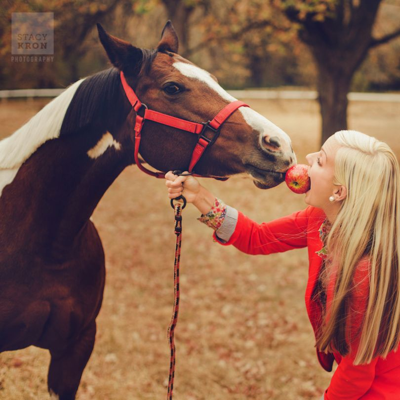 Stacy Kron Photography, Alexandria MN    |   Horse and Owner apple kiss