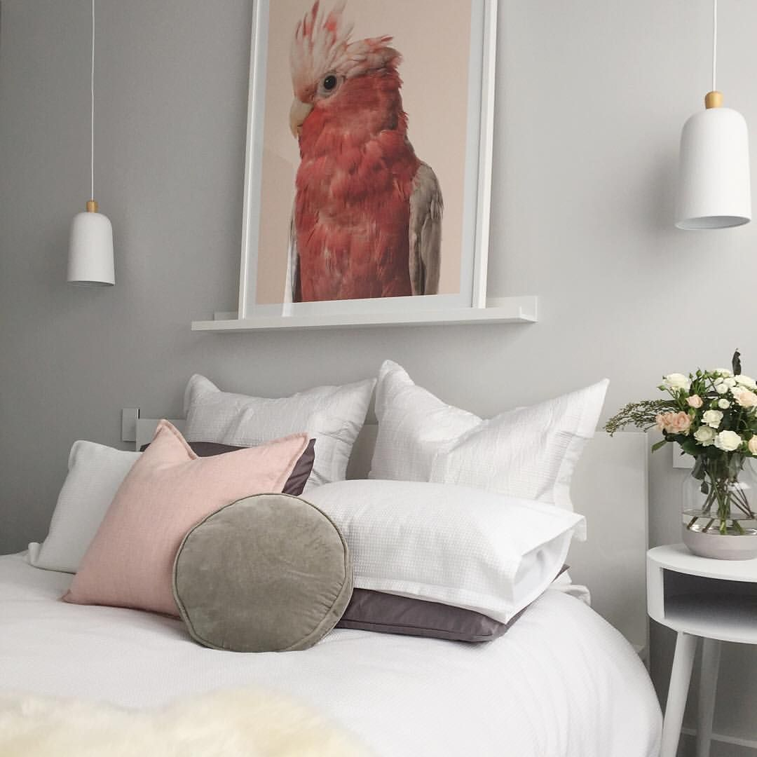 Bedroom Interior Design Green Black And White Bedroom Designs Bedroom Bedside Lights Bedroom Ideas Country: Contemporary Australian Bedroom With Large Galah