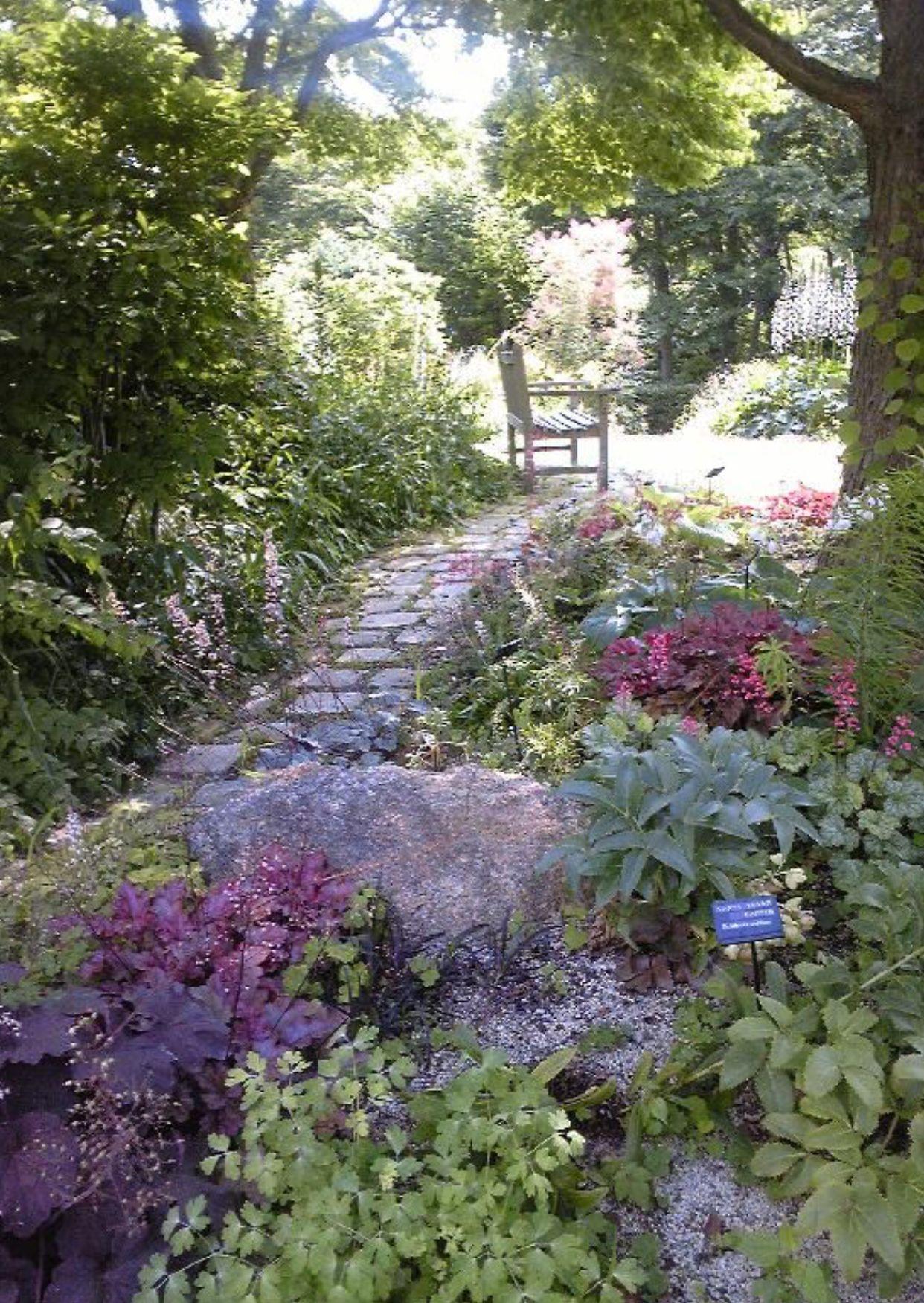 Pin By Divya On Landscaping Cottage Garden Backyard Garden Small Cottage Garden Ideas