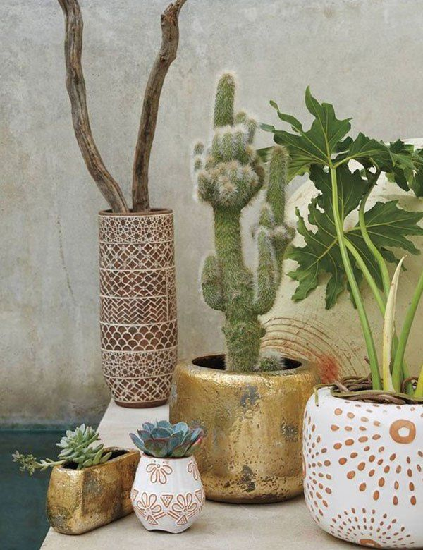 awesome tropical decorating ideas for your home my cosy retreat indoor plant pots also rh pinterest