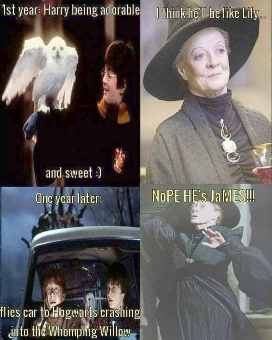 Harry Potter World Minecraft For Harry Potter Spells List All Harry Potter Movies Rotten Tomatoes Harry Potter Jokes Harry Potter Puns Harry Potter Universal