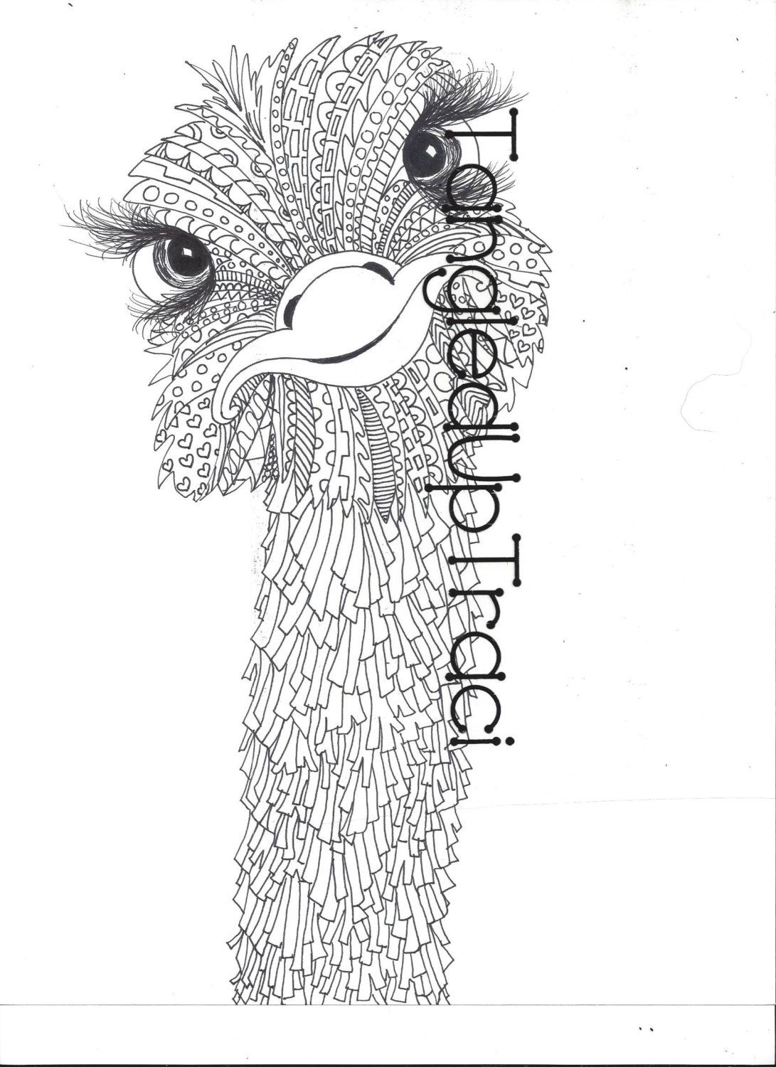 Ostrich Zentangle Coloring Page for Adults and by
