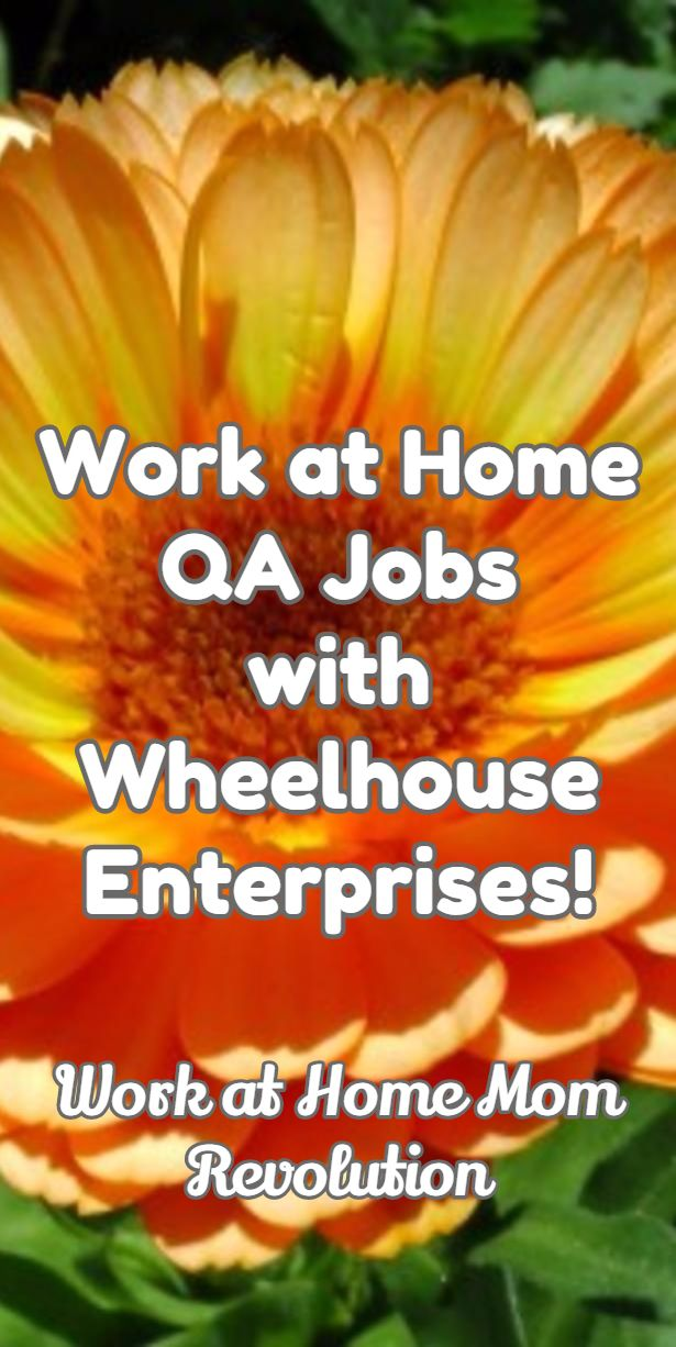 Work at Home QA Jobs with Wheelhouse Enterprises | Revolution, Job Work From Home Qa Job on work from home job sites, work from home recruiter, work from home resume,