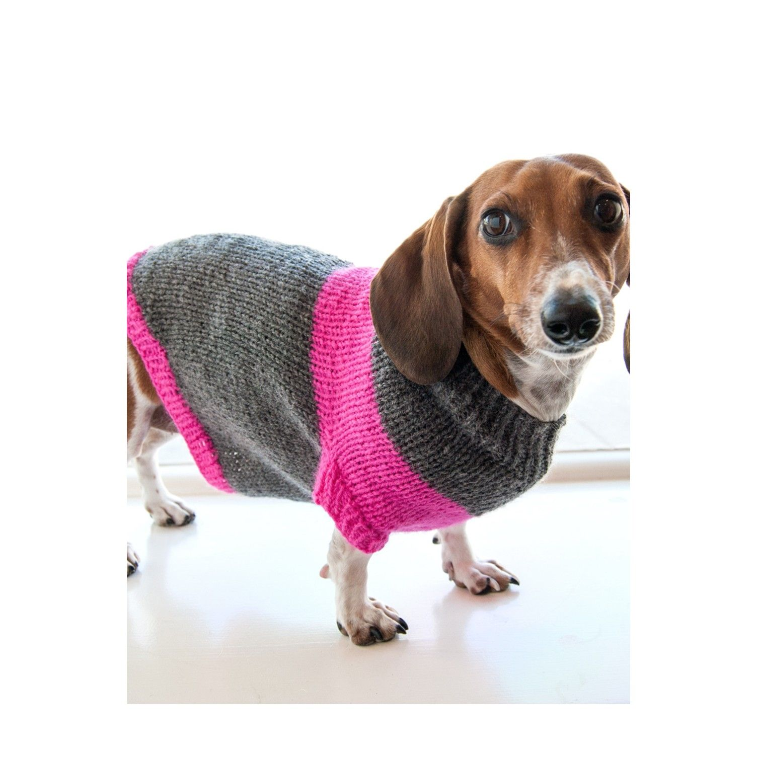 Puppy pullover free dog sweaters pinterest pullover free pattern bankloansurffo Gallery