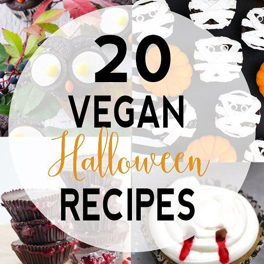 Need a last minute recipe for #Halloween? I rounded up 20 tasty and spooky #vegan treats for tonight from some of my favorite bloggers! Link to post in my profile! . . . #vnutrition #vegan #plantbased  #whatveganseat #vegansofig #veganfoodshare #meatlessmonday #bgbcommunity #veganblogeats #veganfoodporn #f52gram #vegetarian #foodporn #veganfoodspot #eeeeeats #foodstgram #thechalkboardeats #foods4thought #bestofvegan #letscookvegan #instagood #healthy