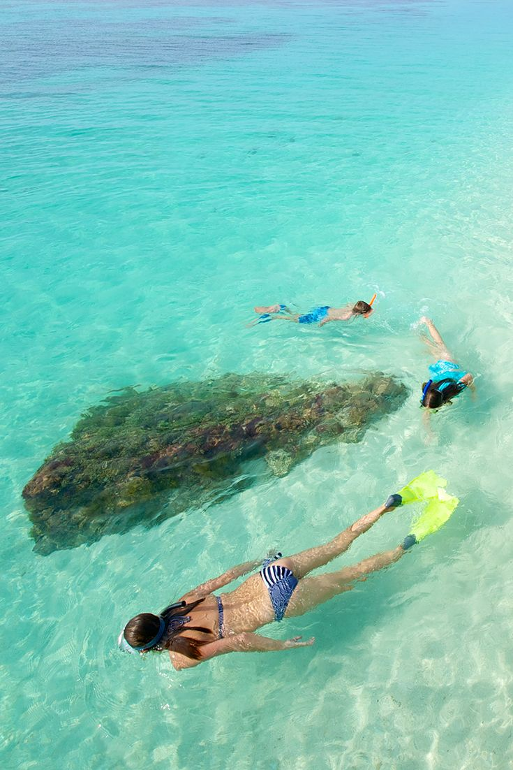 Snorkel The Clear Blue Waters And Soak Up The Sun At The Dry Tortugas Dry Tortugas National Park Key West Snorkeling National Parks