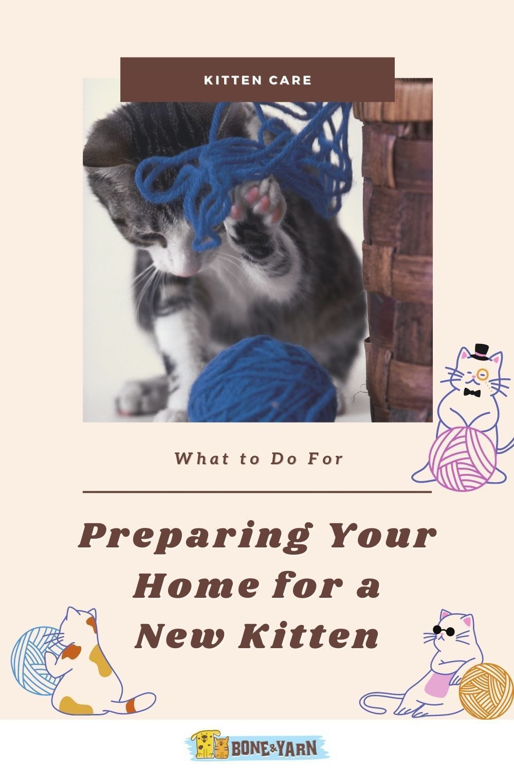 Preparing Your Home For A New Kitten In 2020 Kitten Care Kitten Cat Care