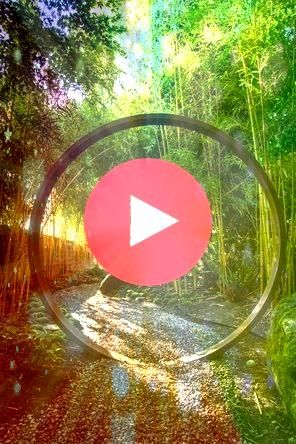 enter the garden along a shady gravel path stepping through a moon gat Visitors enter the garden along a shady gravel path stepping through a moon gat  On a large propert...