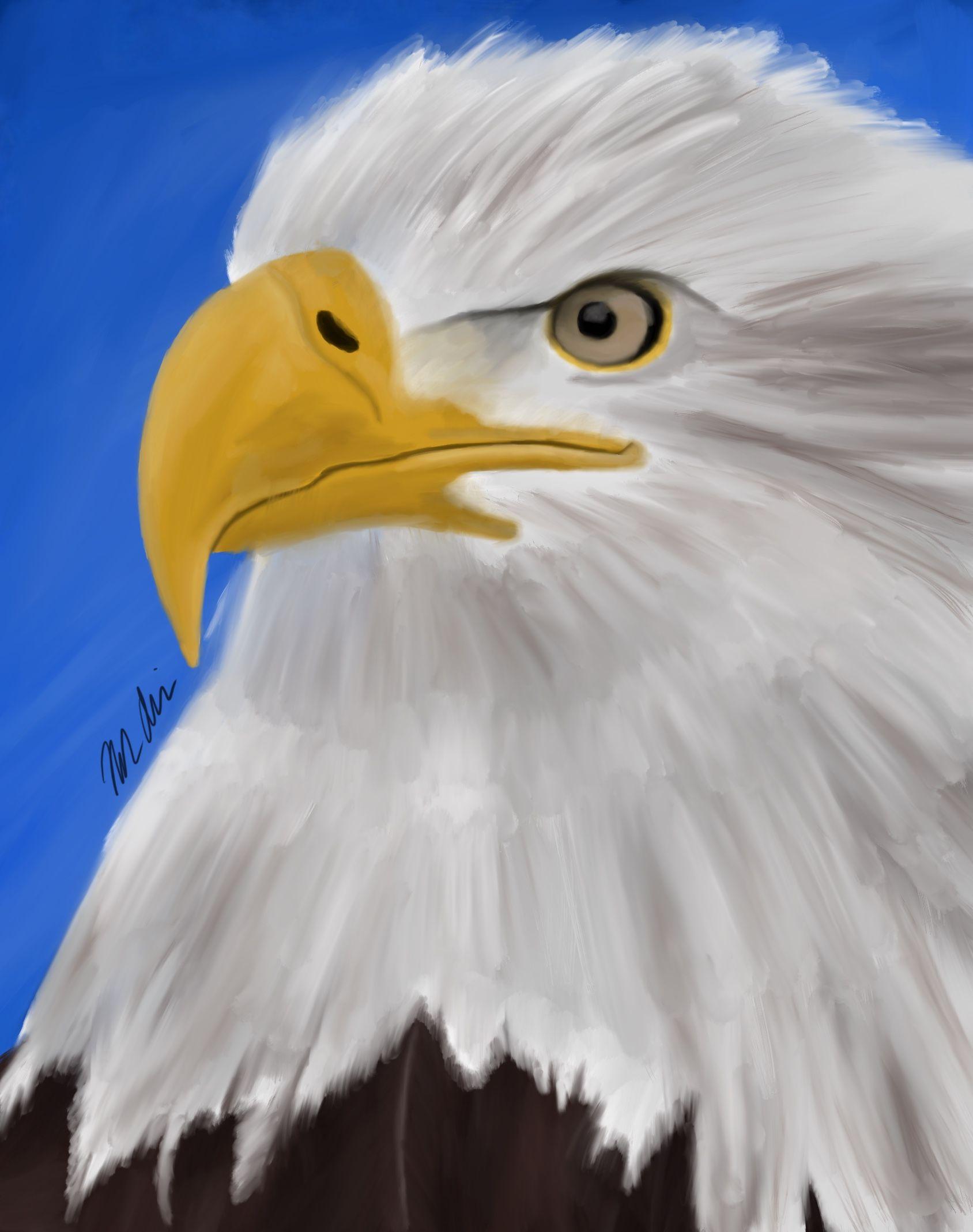 Face Of Freedom Digital Art Bald Eagle My Arts