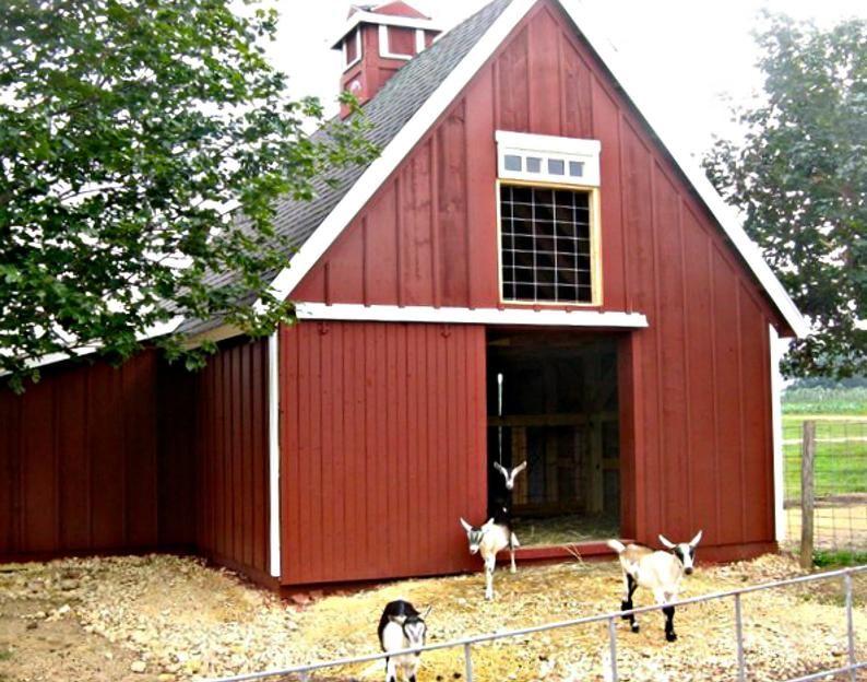 14+ Multi animal barn layouts ideas