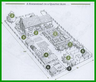 My Galician Garden Garden Design Continued Homesteading Homestead Layout Backyard Farming