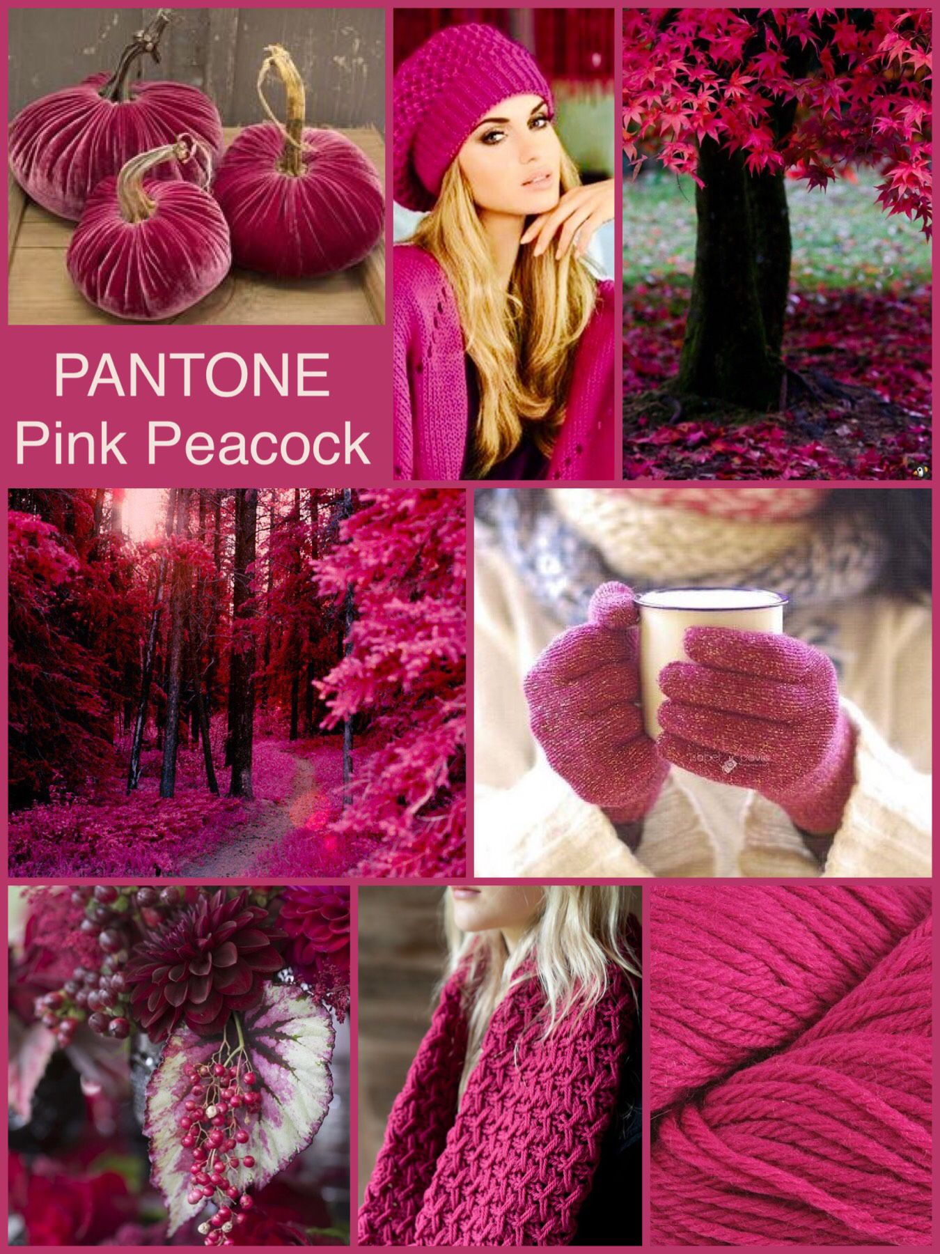 PANTONE Pink Peacock by Mimmi | Pantone Fall 2018 &Winter ...