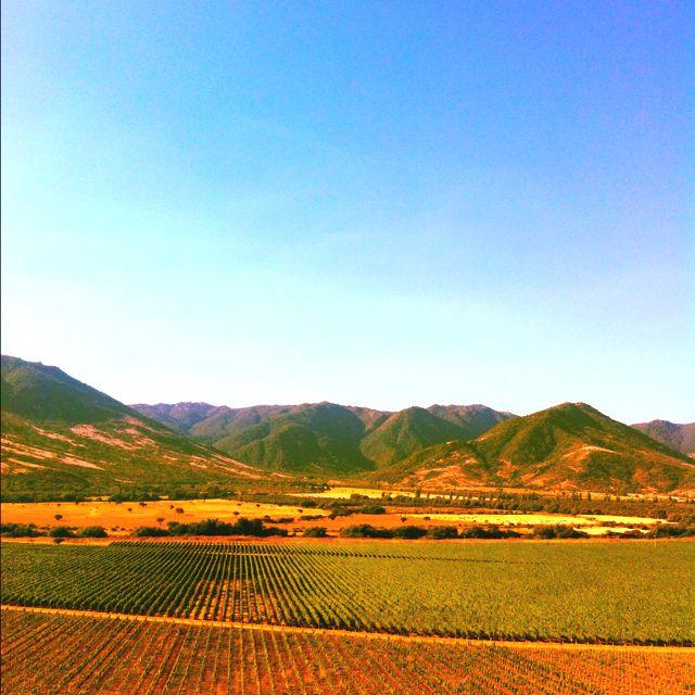 Vi a santa cruz colchagua valley chile places for Santa cruz chile