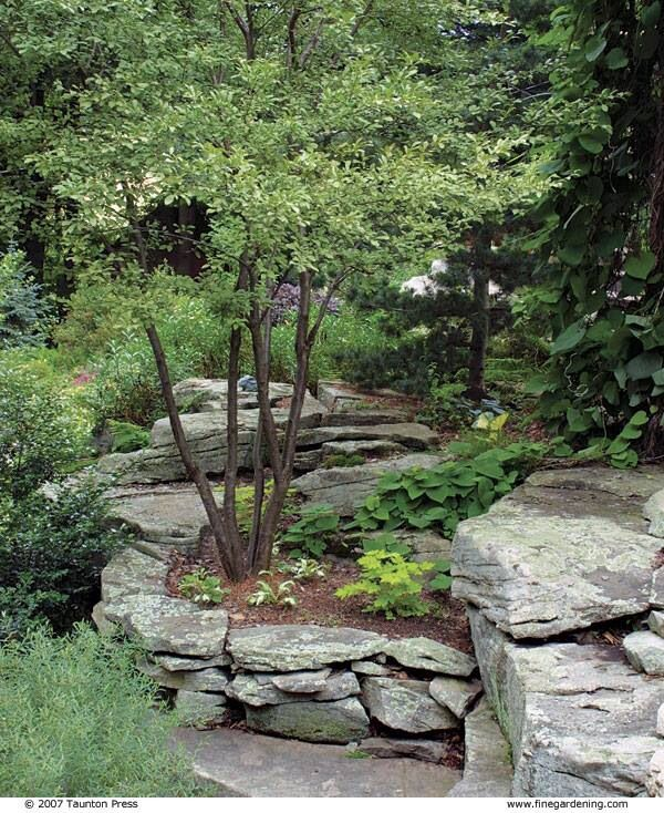 Flat Rocks bring Unique Style to your Garden Landscaping