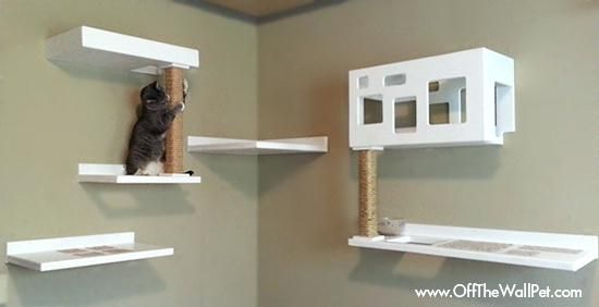 Cat Climbing Wall Diy Cat Wall Climbing System Wyskytech Com Fur