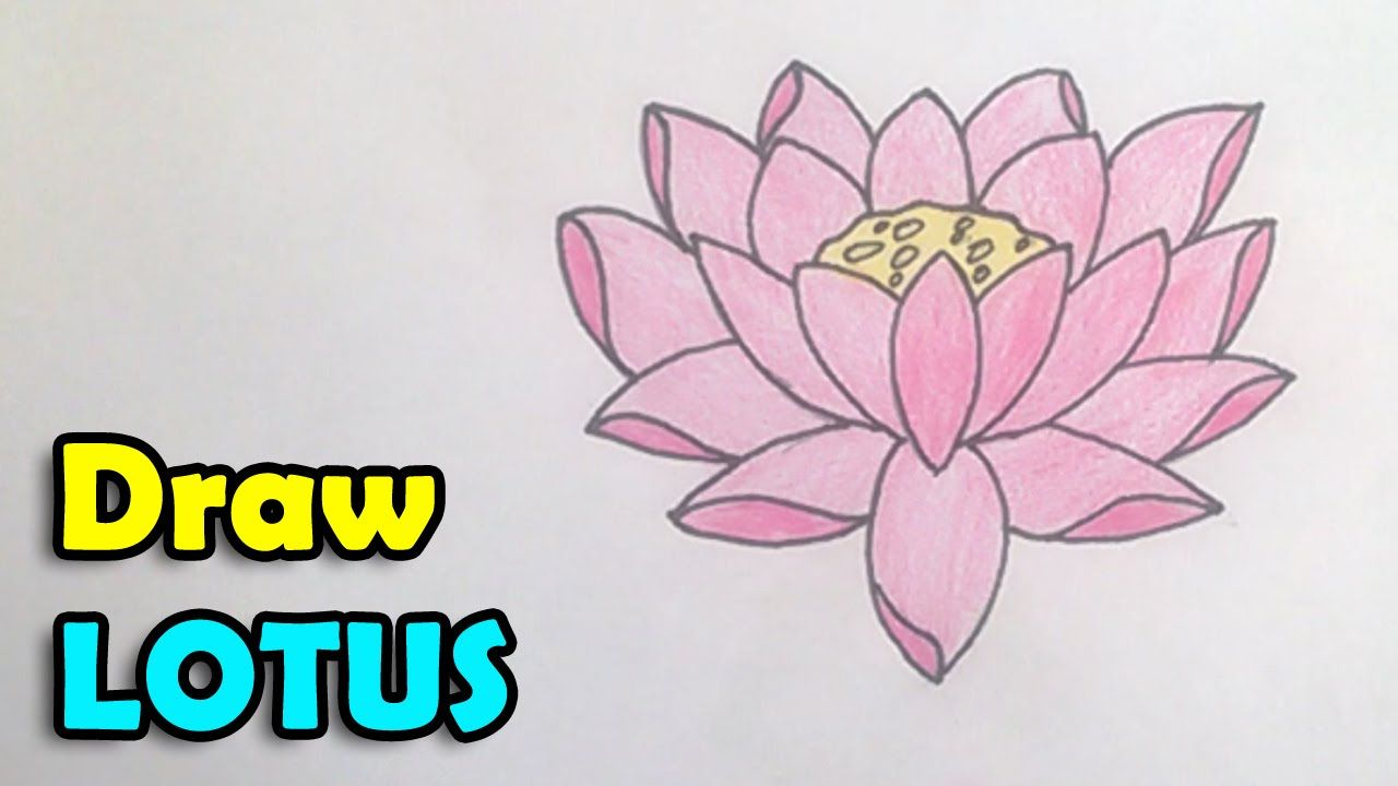 How To Draw Lotus Flower Step By Step Easy In This Video We Are