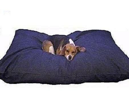 Xxl Extra Large Orthopedic 55 X37 Memory Foam Water Resist Denim Dog Pet Bed Pillow For Big Dog With 2 Layer O Dog Pillow Bed Dog Pet Beds Extra Large Dog Bed