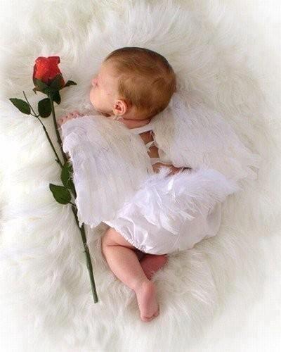 Angelito con rosa.