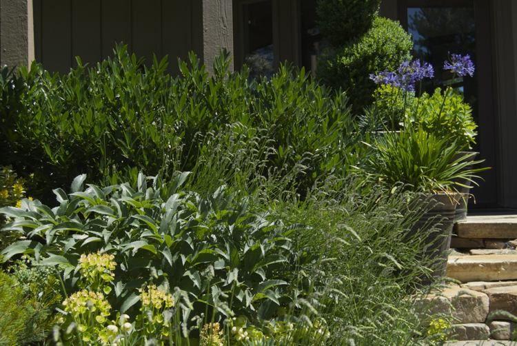22 vorgartengestaltung ideen und tipps - richtig begrünen und, Garten und erstellen