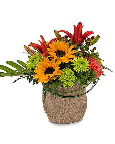 Giddy Up Fall flowers, Get well flowers, Flower delivery