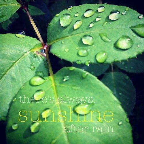 Sunshine After Rain #quotes