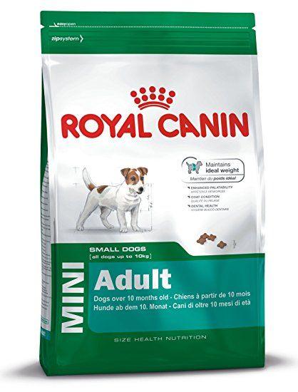 Royal Canin Dog Food Mini Adult 8kg Dog Food Dog Training Dog