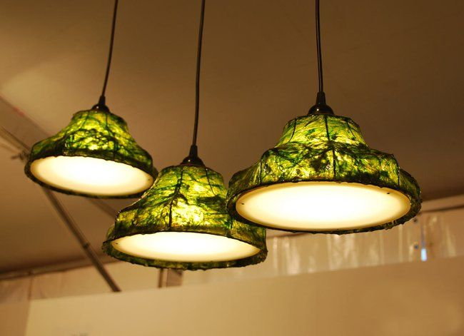 Ocean inspired lamps made with seaweed video