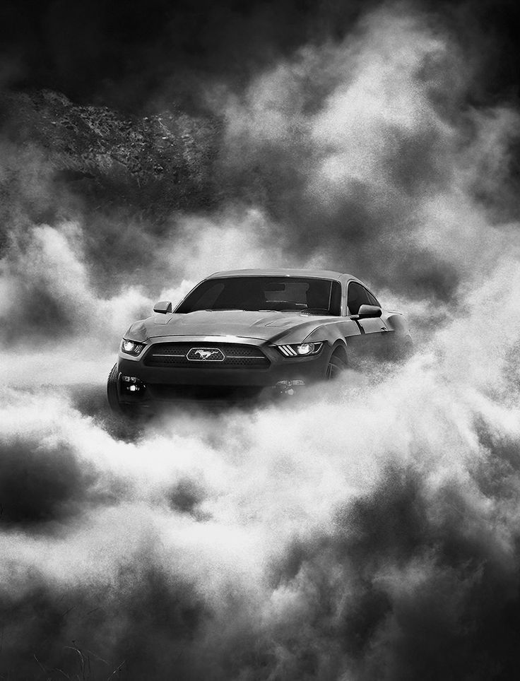 Ford Mustang GT 50 Anniversary - -